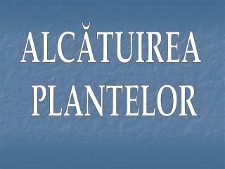 ALCĂTUIREA  PLANTELOR