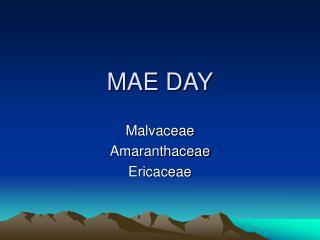 MAE DAY