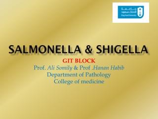 Pathogenic Gram-Negative  Bacilli Salmonella-Shigella