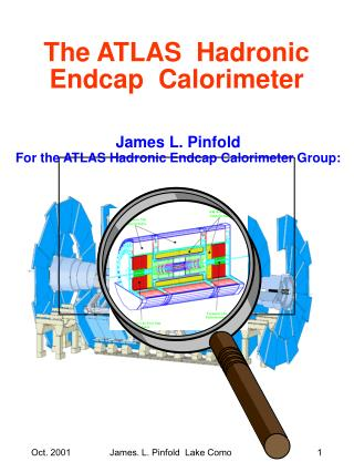 The ATLAS  Hadronic Endcap  Calorimeter
