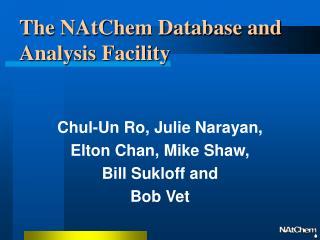 The NAtChem Database and  Analysis Facility