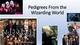 Pedigrees