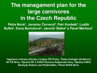 The managament plan for the large carnivores  in the Czech Republic