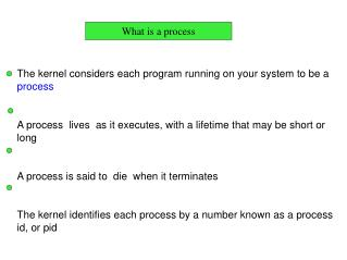 The kernel considers each program running on your system to be a  process