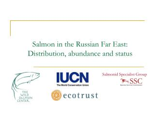 Salmon in the Russian Far East:  Distribution, abundance and status