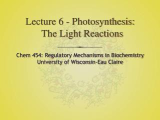Lecture 6 - Photosynthesis: The Light Reactions