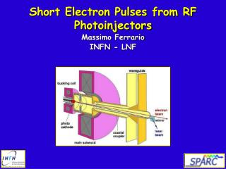 Short Electron Pulses from RF Photoinjectors Massimo Ferrario INFN - LNF