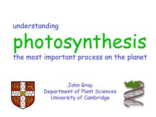 understanding photosynthesis the most important process on the planet