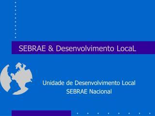 SEBRAE & Desenvolvimento LocaL
