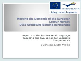 Meeting the Demands of the European Labour Market: DILS Grundtvig learning partnership