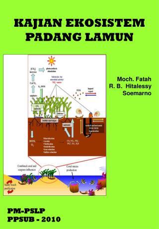 KAJIAN EKOSISTEM  PADANG LAMUN Moch. Fatah R. B.  Hitalessy Soemarno PM-PSLP PPSUB - 2010