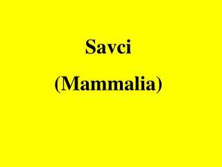 Savci  (Mammalia)