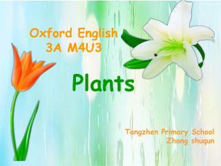 Oxford English       3A M4U3 Plants