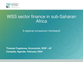 WSS sector finance in sub-Saharan Africa  A regional comparison framework
