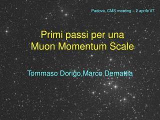 Primi passi per una  Muon Momentum Scale
