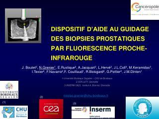 Dispositif d'aide au guidage des biopsies prostatiques par fluorescence proche-infrarouge
