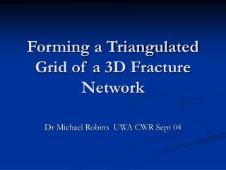 Forming a Triangulated Grid of a 3D Fracture Network