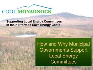 Supporting Local Energy Committees in their Efforts to Save Energy Costs