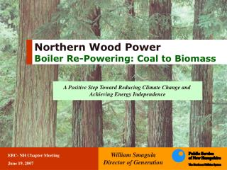 Northern Wood Power Boiler Re-Powering: Coal to Biomass