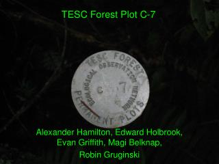 Alexander Hamilton, Edward Holbrook, Evan Griffith, Magi Belknap,  Robin Gruginski
