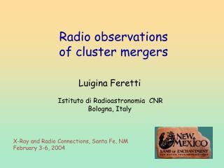 Luigina Feretti Istituto di Radioastronomia  CNR Bologna, Italy