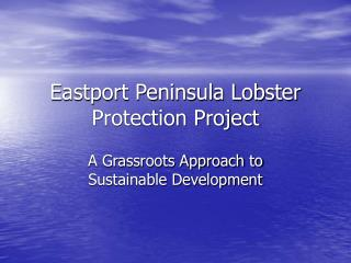 Eastport Peninsula Lobster Protection Project