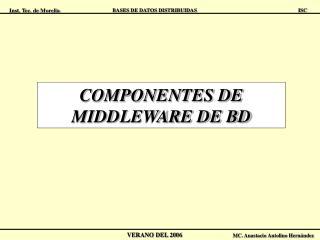 COMPONENTES DE MIDDLEWARE DE BD
