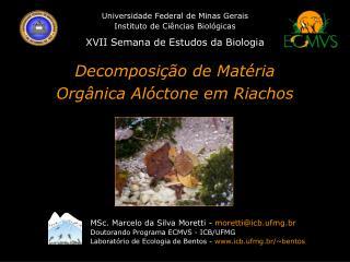 Universidade Federal de Minas Gerais Instituto de Ciências Biológicas