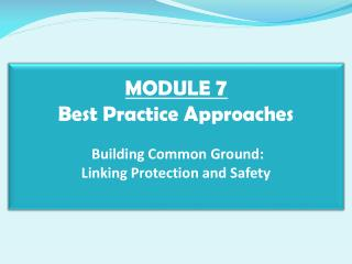 MODULE  7 Best Practice Approaches  Building Common Ground:  Linking Protection and Safety