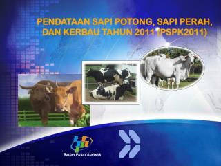 PENDATAAN SAPI POTONG, SAPI PERAH, DAN KERBAU TAHUN 2011 (PSPK2011)