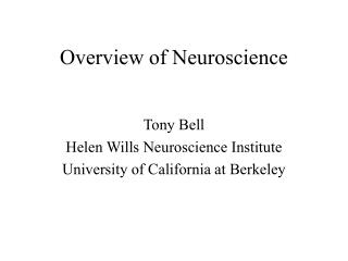 Overview of Neuroscience