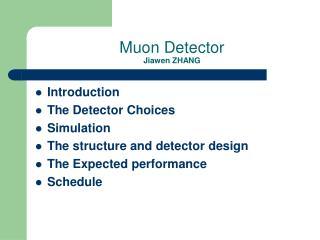 Muon Detector Jiawen ZHANG