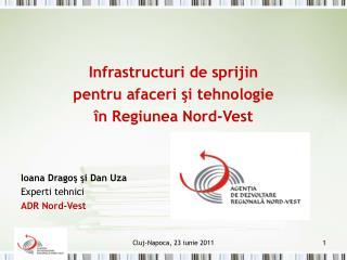 Infrastructuri de sprijin  pentru afaceri  ş i tehnologie  î n Regiunea Nord-Vest