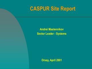CASPUR Site Report