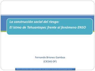 Fernando Briones Gamboa   (CIESAS-DF)