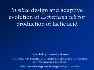 In silico  design and adaptive evolution of  Escherichia coli  for production of lactic acid