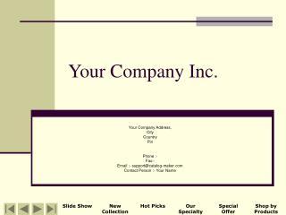 Your Company Inc.