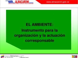 EL AMBIENTE:  Instrumento para la organizaci�n y la actuaci�n corresponsable