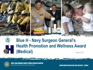 Blue H - Navy Surgeon General s  Health Promotion and Wellness Award  Fleet