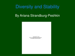 Diversity and Stability