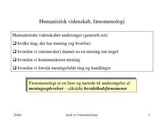 Humanistisk videnskab, fænomenologi