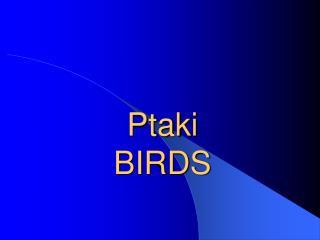 Ptaki BIRDS