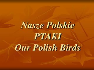 Nasze Polskie PTAKI Our Polish Birds