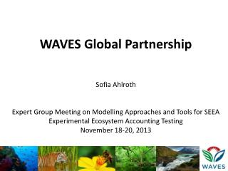 WAVES Global Partnership