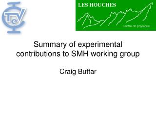 Summary of experimental contributions to SMH working group