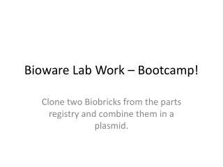 Bioware Lab Work – Bootcamp!