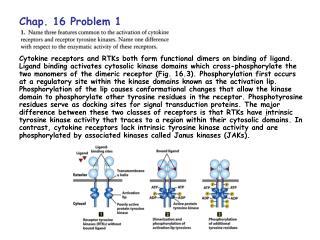 Chap. 16 Problem 1