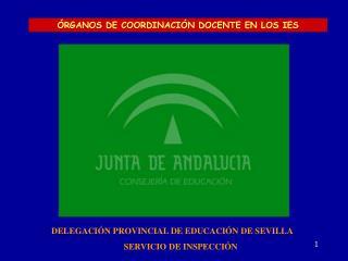 DELEGACIÓN PROVINCIAL DE EDUCACIÓN DE SEVILLA SERVICIO DE INSPECCIÓN