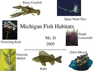 Michigan Fish Habitats