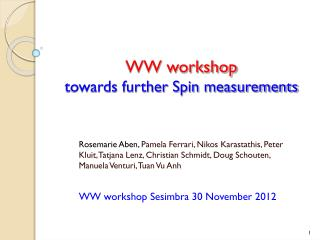 WW workshop towards further Spin measurements